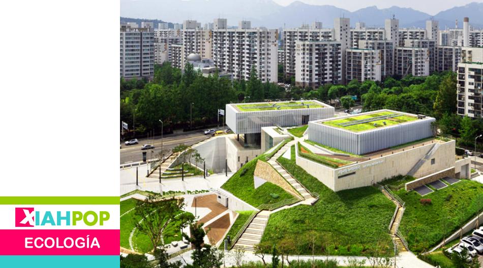 Seúl desea formar un millón de agricultores urbanos para 2024