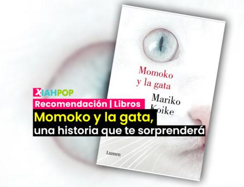 Momoko y la gata, una historia que te sorprenderá
